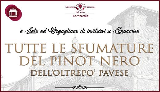 Tutte le sfumature del Pinot Nero OP (28 gennaio-02 febbraio 2019)