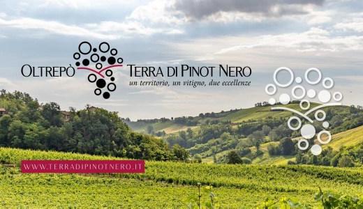 Oltrepò terra di Pinot Nero (27/09/2021)